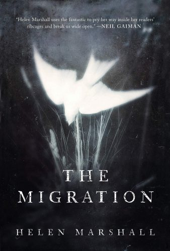 The Migration cover