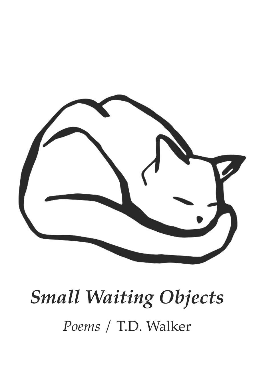 Small Waiting Objects by T. D. Walker